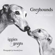 Greyhounds Big And Small : Iggies and Greyts, Paperback Book