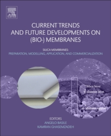 Current Trends and Future Developments on (Bio-) Membranes : Silica Membranes: Preparation, Modelling, Application, and Commercialization, Paperback Book
