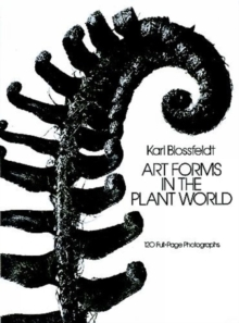 Art Forms in the Plant World, Paperback / softback Book