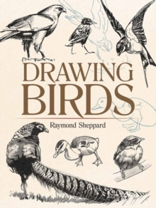 Drawing Birds, Paperback Book