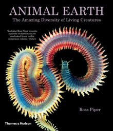 Animal Earth : The Amazing Diversity of Living Creatures, Paperback Book