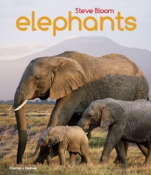Elephants, Paperback / softback Book