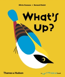 What's Up?, Hardback Book