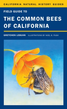 Field Guide to the Common Bees of California : Including Bees of the Western United States, Hardback Book