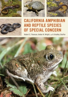California Amphibian and Reptile Species of Special Concern, Paperback Book