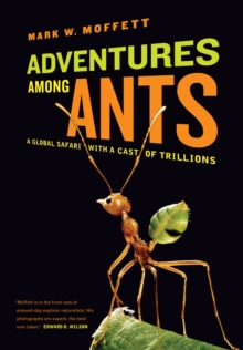 Adventures among Ants : A Global Safari with a Cast of Trillions, EPUB eBook