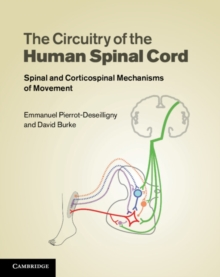 The Circuitry of the Human Spinal Cord : Spinal and Corticospinal Mechanisms of Movement, Hardback Book