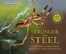 Stronger Than Steel : Spider Silk DNA and the Quest for Better Bulletproof Vests, Suters, and Parachute Rope, Paperback Book