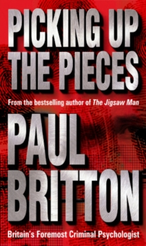 Picking Up The Pieces, Paperback Book