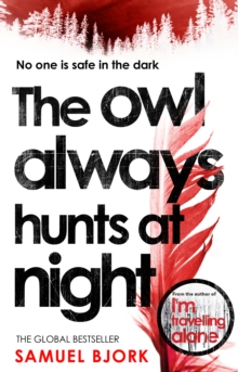 The Owl Always Hunts at Night : (Munch and Kruger Book 2), Paperback Book