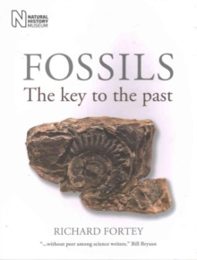 Fossils : The Key to the Past, Paperback Book