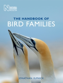 The Handbook of Bird Families, Paperback / softback Book