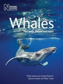 Whales : Their Past, Present and Future, Paperback Book