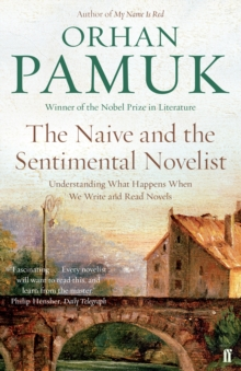 The Naive and the Sentimental Novelist : Understanding What Happens When We Write and Read Novels, Paperback / softback Book