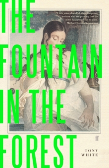 The Fountain in the Forest, Paperback Book