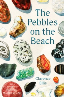 The Pebbles on the Beach, Paperback / softback Book