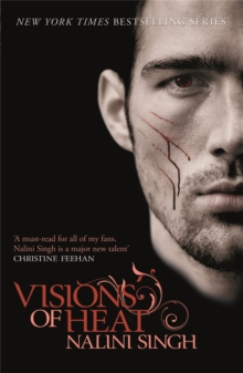 Visions of Heat : Book 2, Paperback / softback Book