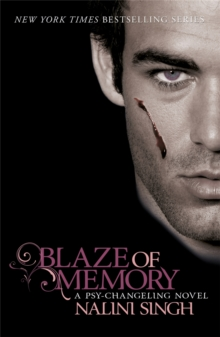 Blaze of Memory : Book 7, Paperback / softback Book
