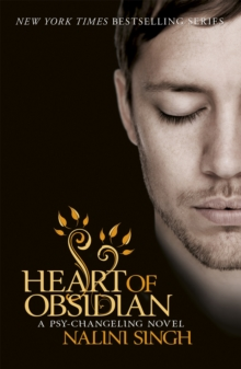 Heart of Obsidian : Book 12, Paperback / softback Book