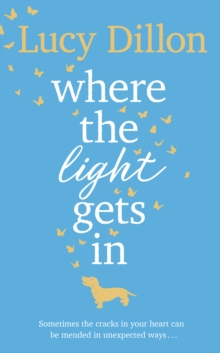 Where The Light Gets In, Hardback Book