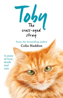 Toby the Cross-Eyed Stray, Paperback Book