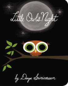 Little Owl's Night, Hardback Book