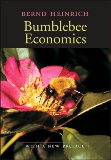 Bumblebee Economics : With a New Preface, Revised Edition, Paperback / softback Book