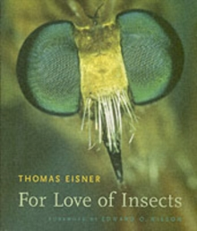 For Love of Insects, Paperback / softback Book