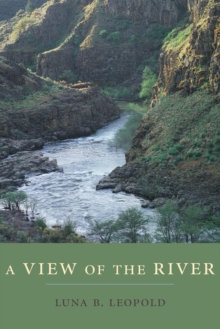 A View of the River, Paperback / softback Book