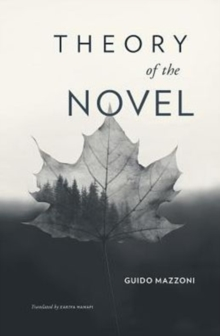 Theory of the Novel, Hardback Book