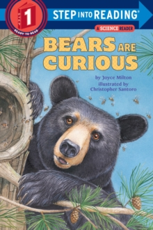 Bears are Curious, Paperback Book