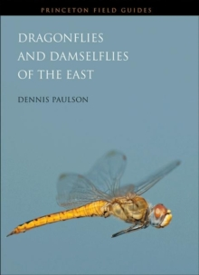 Dragonflies and Damselflies of the East, Paperback / softback Book
