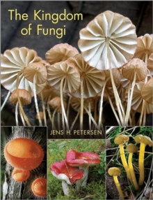 The Kingdom of Fungi, Hardback Book
