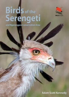 Birds of the Serengeti : And Ngorongoro Conservation Area, Paperback / softback Book