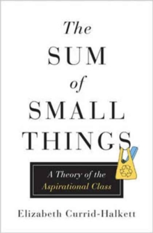 The Sum of Small Things : A Theory of the Aspirational Class, Hardback Book