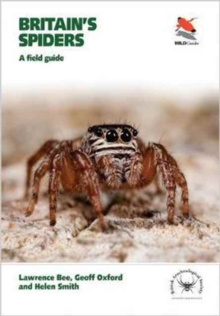 Britain's Spiders : A Field Guide, Paperback Book