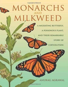 Monarchs and Milkweed : A Migrating Butterfly, a Poisonous Plant, and Their Remarkable Story of Coevolution, Hardback Book