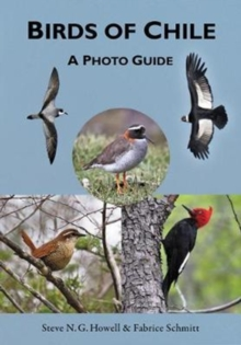 Birds of Chile : A Photo Guide, Paperback Book