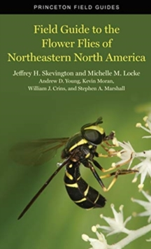 Field Guide to the Flower Flies of Northeastern North America, Paperback / softback Book