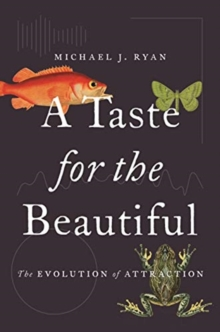 A Taste for the Beautiful : The Evolution of Attraction, Paperback / softback Book