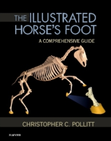 The Illustrated Horse's Foot : A comprehensive guide, Hardback Book