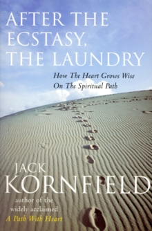 After The Ecstasy, The Laundry, Paperback Book