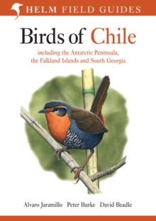 Birds of Chile : Including the Antartic Peninsular, the Falkland Islands and South Georgia, Paperback / softback Book