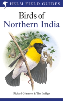 Birds of Northern India, Paperback / softback Book