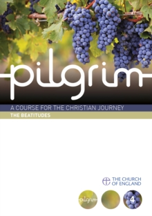 Pilgrim : Book 4 (Follow Stage), Paperback / softback Book