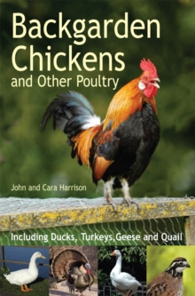 Backgarden Chickens and Other Poultry, Paperback / softback Book