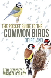 The Pocket Guide to the Common Birds of Ireland, Paperback Book