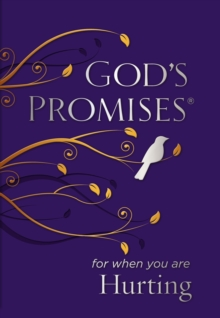 God's Promises for When You are Hurting, Paperback Book