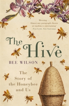 The Hive, Paperback / softback Book