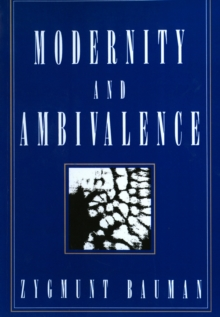 Modernity and Ambivalence, PDF eBook